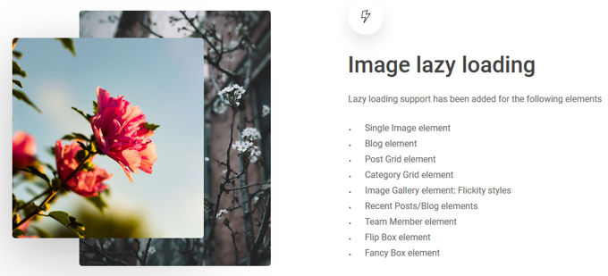 Salient Theme review: Lazy loading